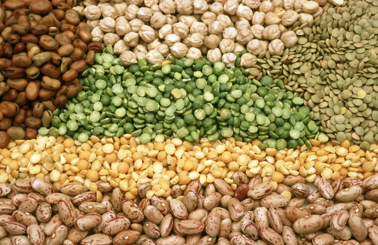 CSIRO_ScienceImage_3224_Pulses_and_legumes.jpg